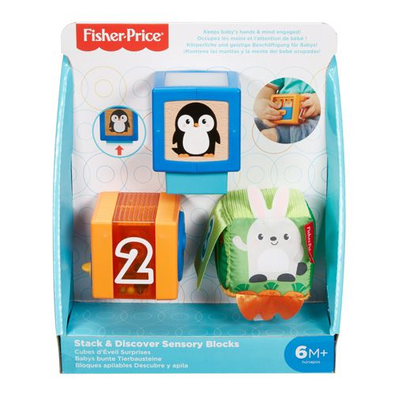 Fisher-Price Stack & Discover Sensory Blocks