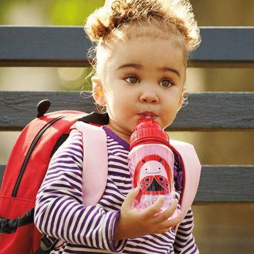 Skip Hop Zoo Straw Bottle Ladybug